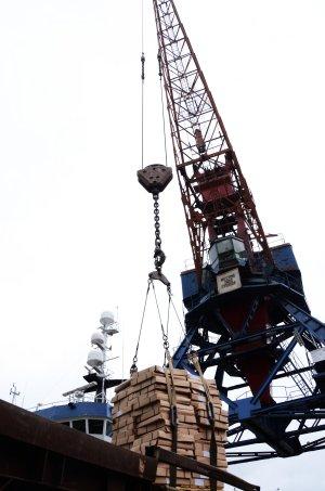 Мурманский рыбный порт Пелагия БЕЛЯКОВА