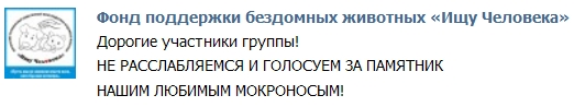 Призыв голосовать за памятник мокроносым