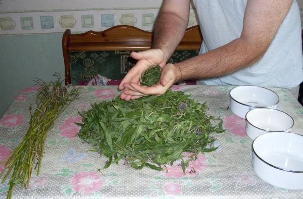 Иван-чай или Копорский чай