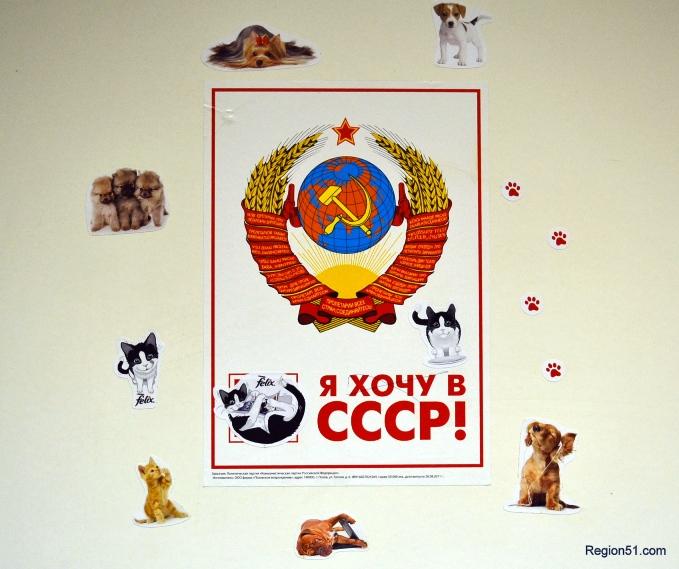 Компания ТехноЦентр, Мурманск
