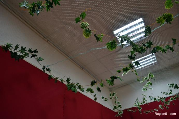 Помещение для тропических бабочек