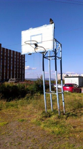 Баскетбольное кольцо на улице Крупской, Мурманск